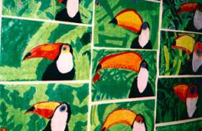 Art Lesson Toco Toucan Drawing