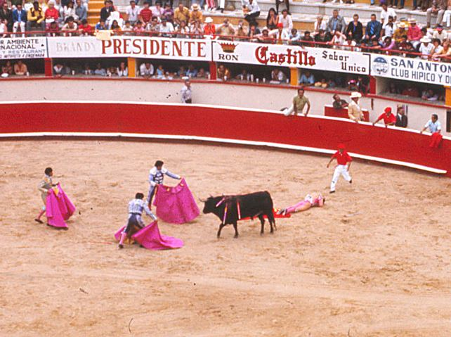 bullfighting research paper Open document below is an essay on bullfighting from anti essays, your source for research papers, essays, and term paper examples.
